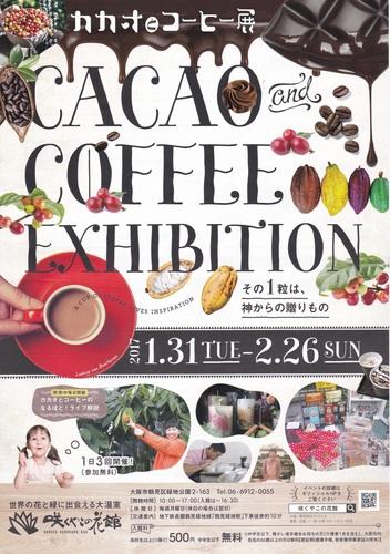 cacao-4_r.jpg