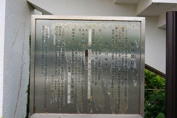 DSC20190703 (48)_R.JPG