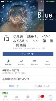 IMG_3438_r.JPG