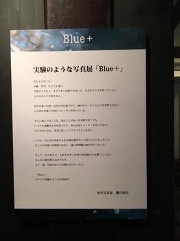 IMG_3443_r.JPG