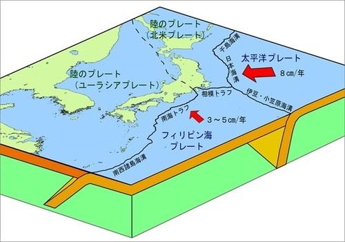 c_plate_jp_r.jpg