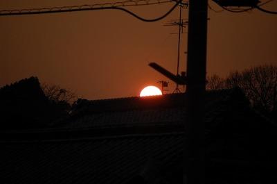 DSC20110124 (1).jpg
